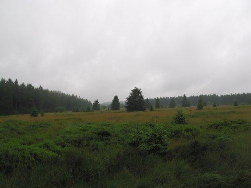 Hochmoor